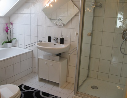 holiday flat in Karlsruhe 17