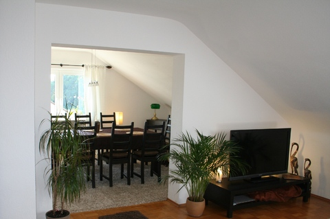 holiday flat in Karlsruhe 9