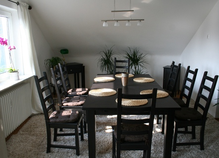 holiday flat in Karlsruhe 8