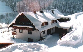 holiday flat in Vöhrenbach 5