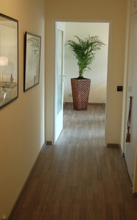 holiday flat in Wiesbaden 4